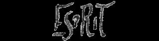 Taalpraktijk Esprit Traductions